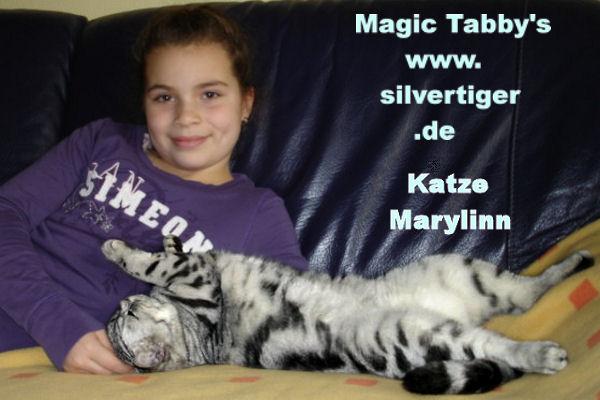 tabbys removed 4 silvertiger.de